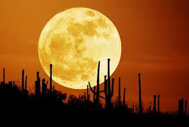 Full yellow moon